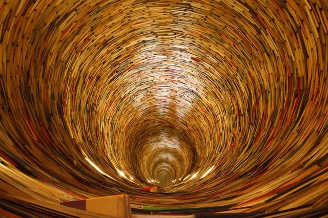deep hole lined with books