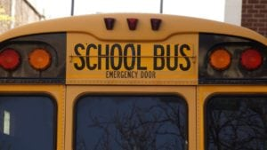 School bus exterior from the rear.