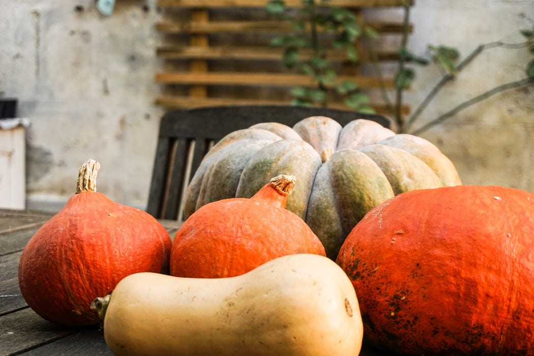 Pumpkins and gourds sitting on a table.